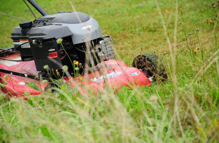 Kosiarka – niezbędny sprzęt w ogrodzie